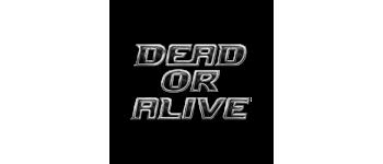 Коллекционные фигурки из игры Dead or Alive