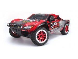 Remo Hobby 9EMU Racing Brushless